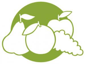 comprar frutas temporada castellon
