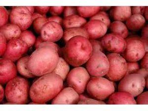 bolsa patatas rojas castellon