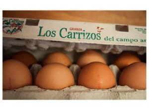 huevos docena castellon