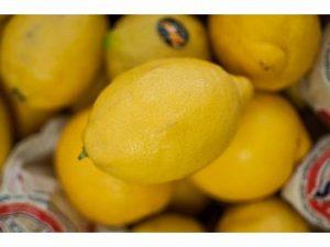 limones castellon