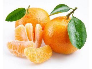 mandarina castellon
