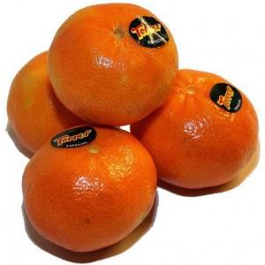 mandarinas torres castellon