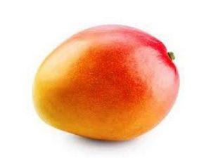 mango castellon