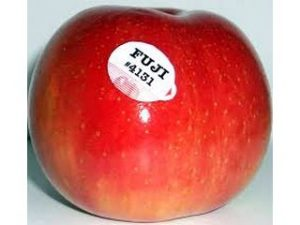 manzana fuji castellon