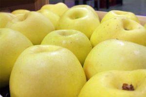 manzana verde doncella castellon