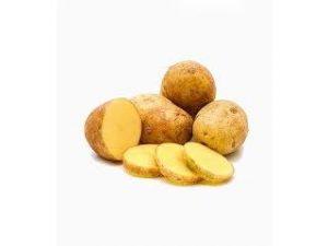 patata agria castellon