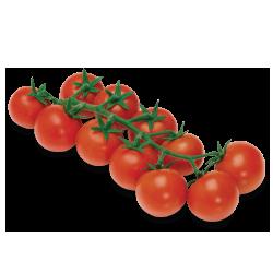 tomate cherry castellon