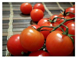 tomate en rama castellon