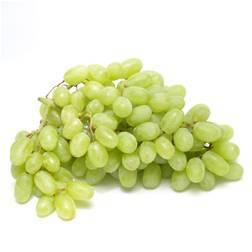uva blanca castellon